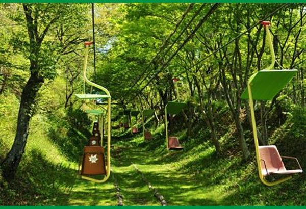『お気軽なアウトドア』妙見の森の満足度や評判は?